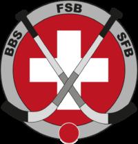 logo bandy png
