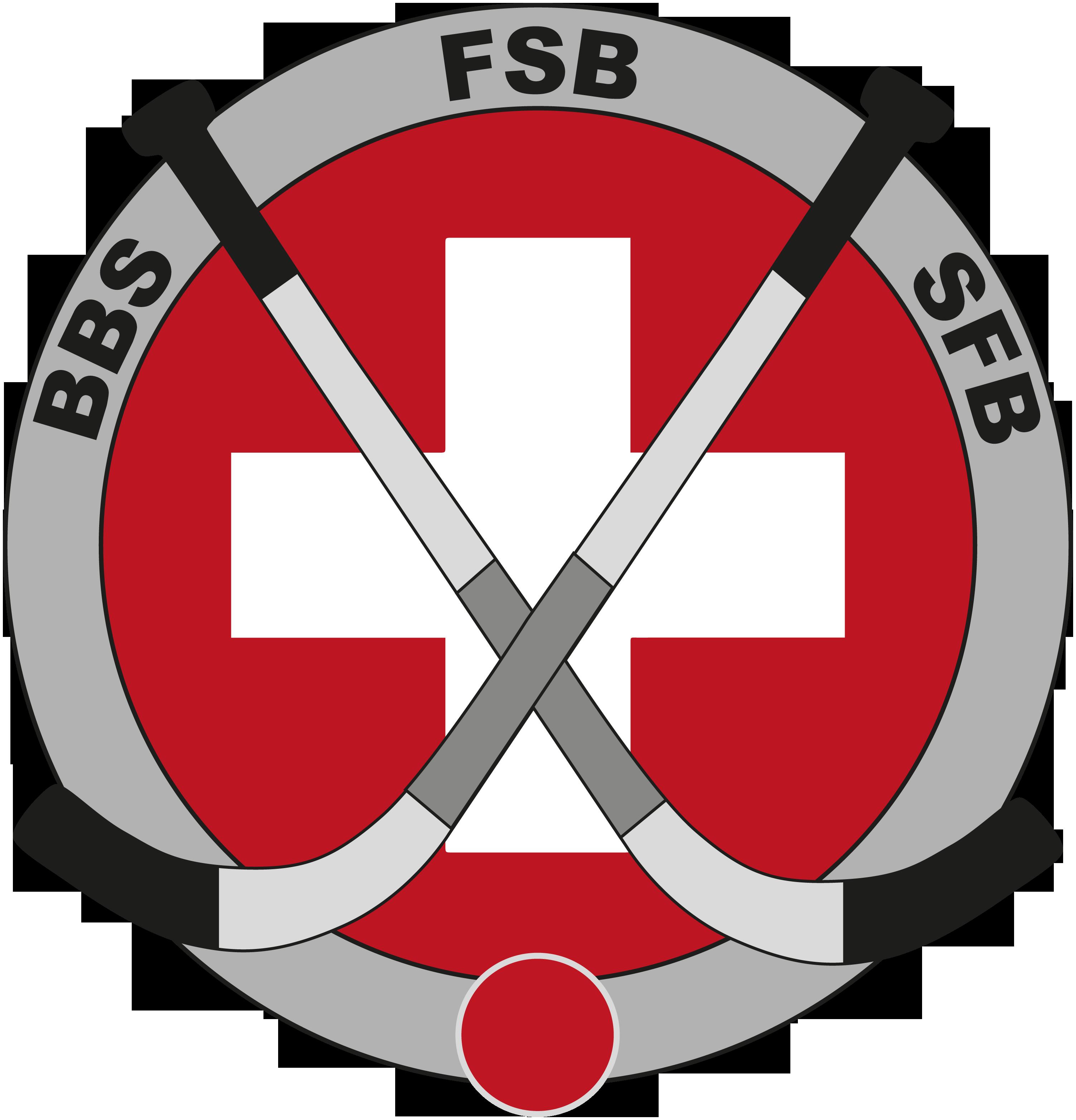 Swiss Bandy